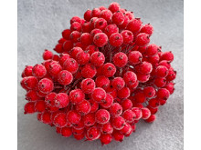 Сахарные ягодки калины